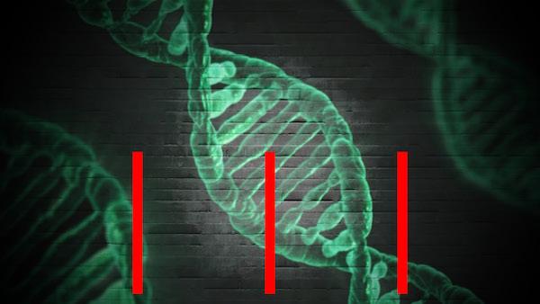 БИОИНФОРМАТИКА, ДНК, НОВЫЕ ЛЕКАРСТВА