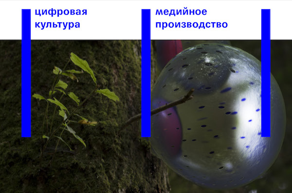 Техносенсориум и биосемиотика в современном искусстве